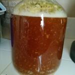 Active fermentation